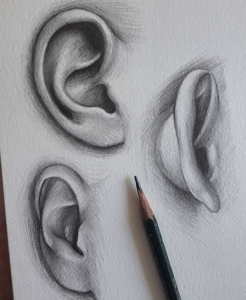 100+ Stunning Realistic Portrait Drawings 121