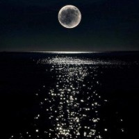 Wordy Wednesday: Moon Reflected on the Ocean