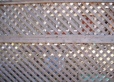 Diagonal wood lattice fence
