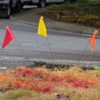 Red and yellow utility line flags showing where undergound pipes are