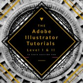 Adobe Illustrator for Beginners Level – I