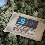 boveda 62for-herbal-square
