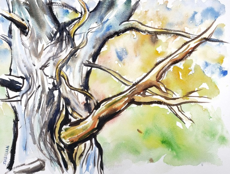 A bold but simple painting of a Cedar Tree Trunk