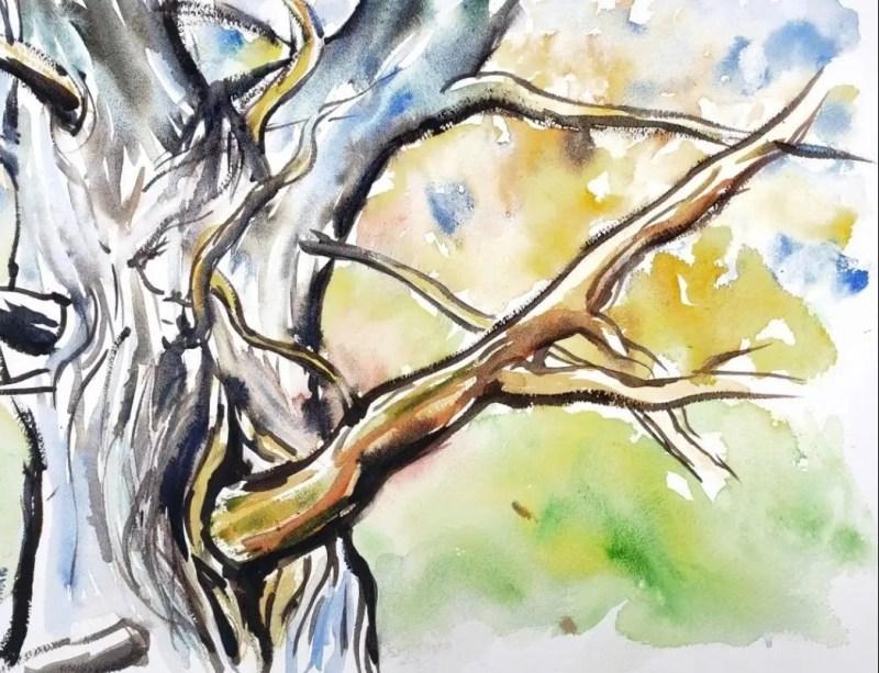 Art During a Pandemic-Cedar Tree Trunk