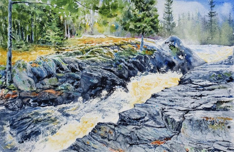 A watercolor painting of part the Silver River Falls