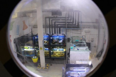 Title:Lab Space Medium:Photography Size:2.5MB