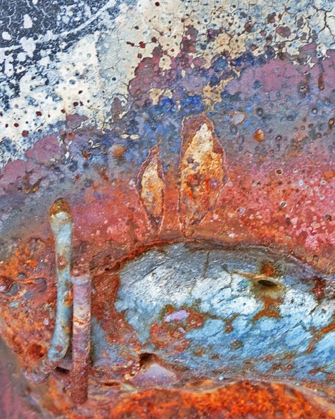 "Title:Mesa Azul Medium:Macro Photography Size:16""x20"""
