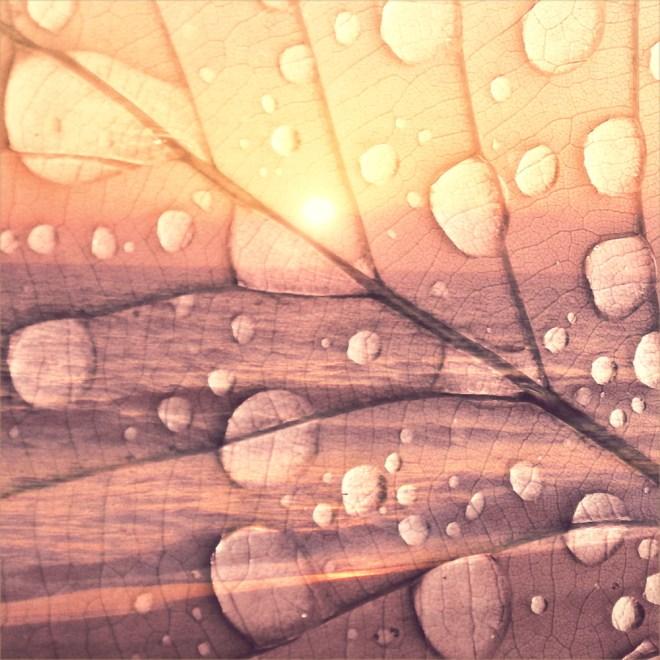 Title:Everything Medium:Digital Photo Art Size:1500x1500 px