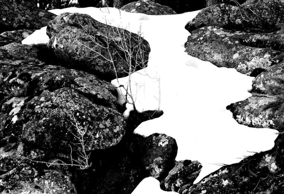 Title:Rocks, Snow, Lichens and Branches Medium:Photography Size:19x13