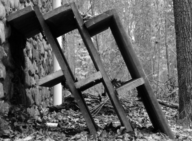 Title:leaning wood Medium:photography Size:approx 11 by 9