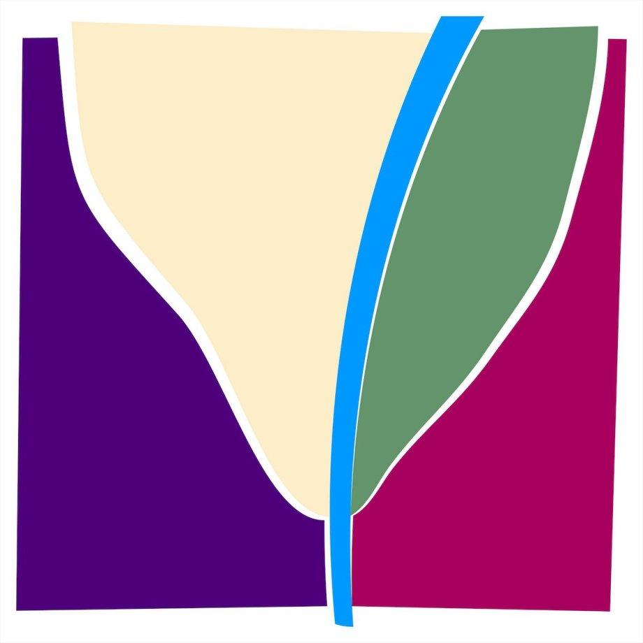 Title: tulip Medium: stretched original digital UV print on SAMBA from digitaly created source Size: 100x100x3.5cm