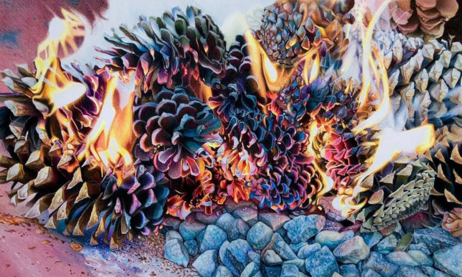 "Title Crak'lin Cones on Qartz Medium Colored pencil Size 14.75""x21.25"""