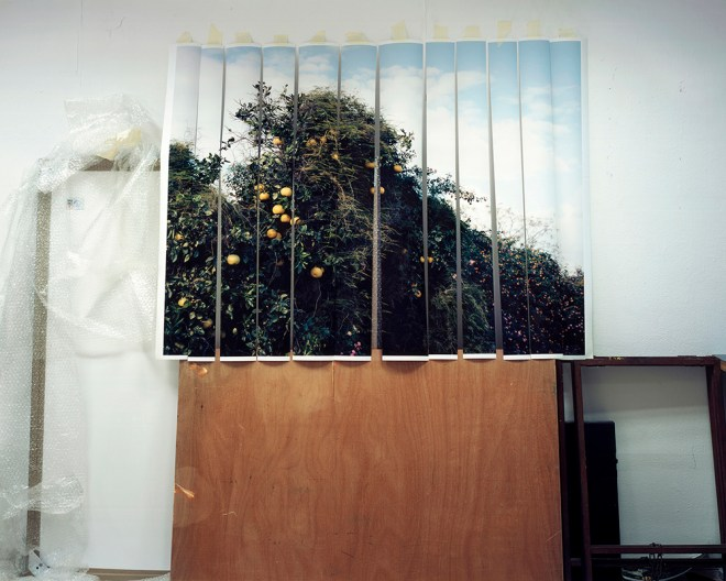 Title Untitled Medium Photography Size 110 cm x 137 cm