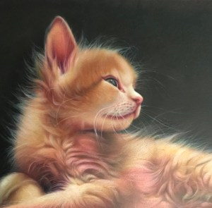 """Title Blossom as a Kitten Medium Colored Pencil Size 14"""" x 18"""""""