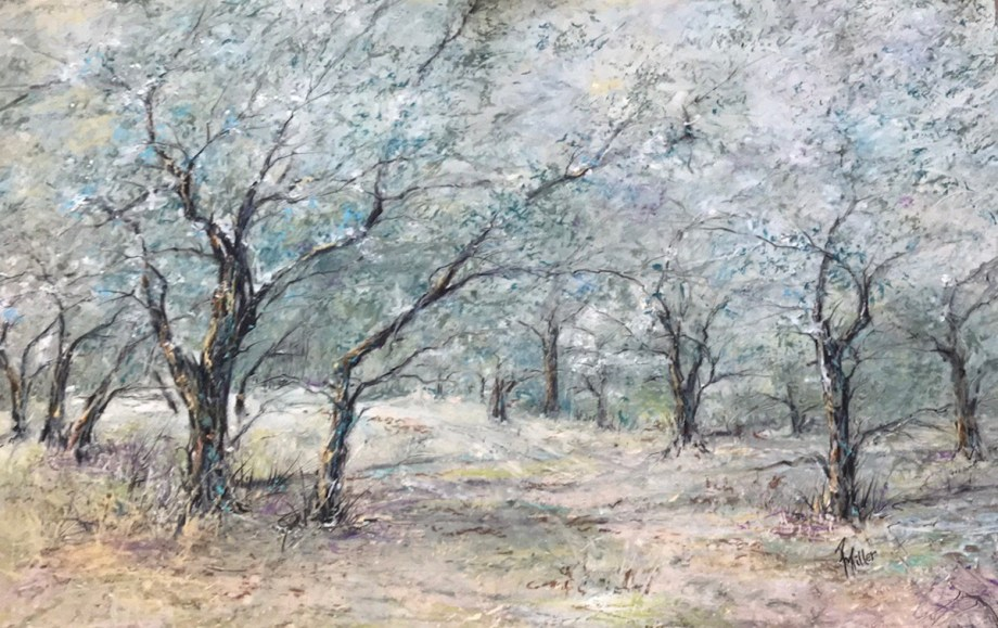 "Title Vincent's Olive Trees(Arles,France) Medium Oil Pastel Size 14""x19"""