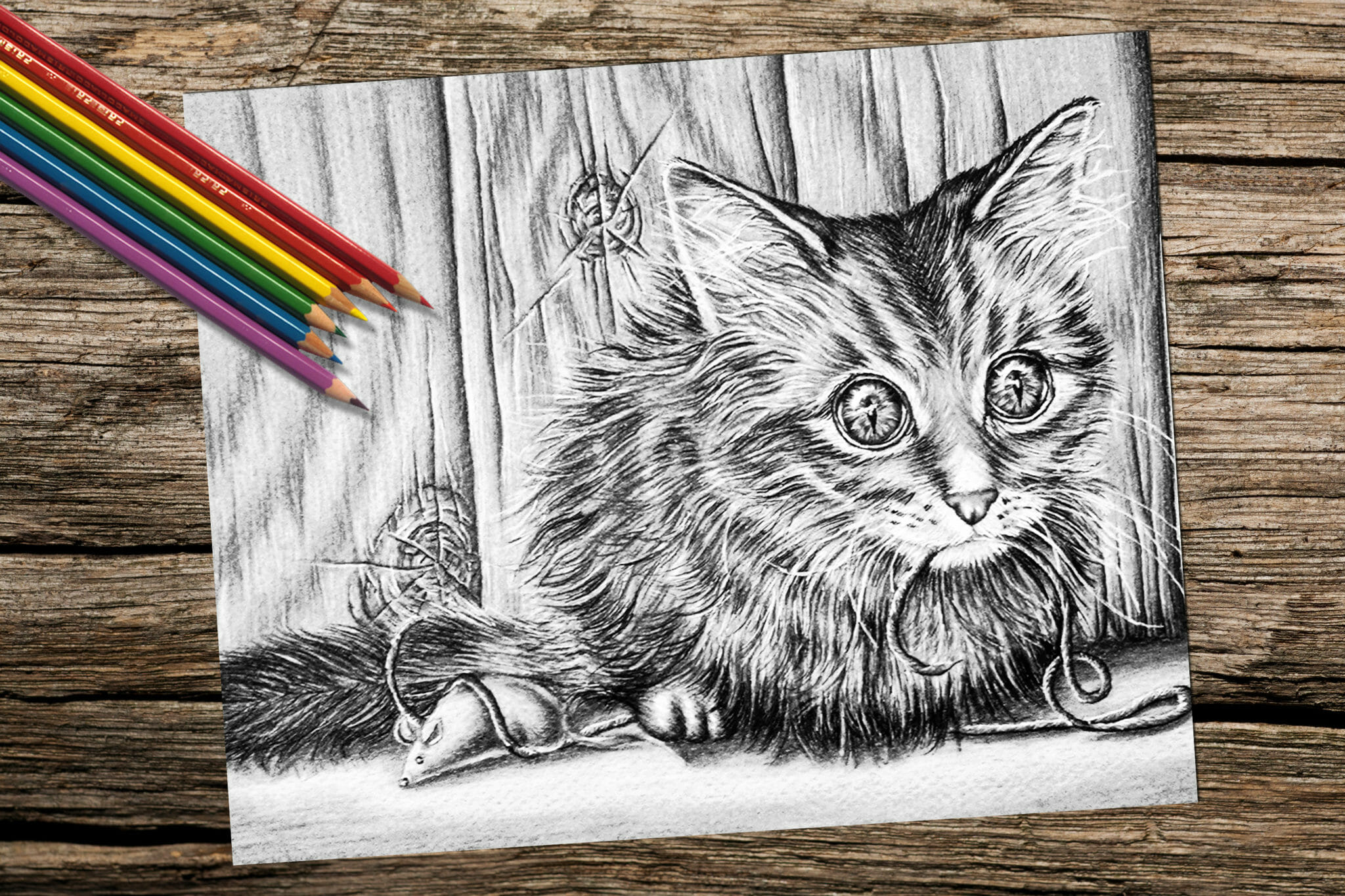 Fun Coloring Video Page Of A Cat