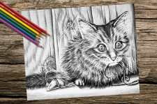 http://artistrybylisamarie.com/product/printable-coloring-page-cat-with-yarn-and-toy/