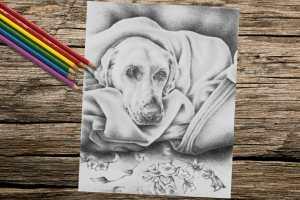 doginblanket8x10_coloring_onwood