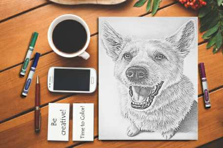 http://artistrybylisamarie.com/product/printable-coloring-page-dog-sitting-2/