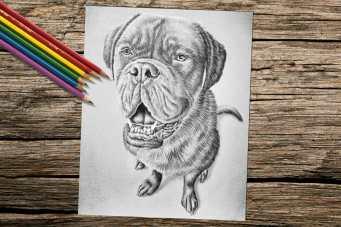 dogsitting_8x10_coloring_onwood