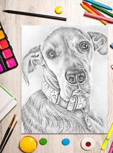 http://artistrybylisamarie.com/product/printable-coloring-page-great-dane/
