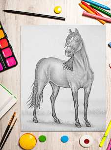 http://artistrybylisamarie.com/product/printable-coloring-page-horse/