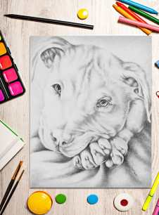 http://artistrybylisamarie.com/product/printable-coloring-page-pitbull/