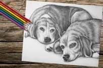twobeaglesresting_8x10_coloring_onwood
