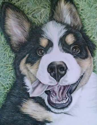 """Dog on Grass"" 11""x14"" Colored Pencil on Paper, SOLD"