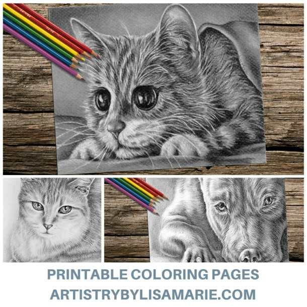 Stay Creative And Get Coloring TODAY These Hand Drawn Printable Pages Are Ready For You To Order Print At Home