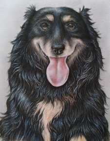 """""""Gypsy"""" Colored Pencil on Paper, 8""""x10"""" SOLD"""