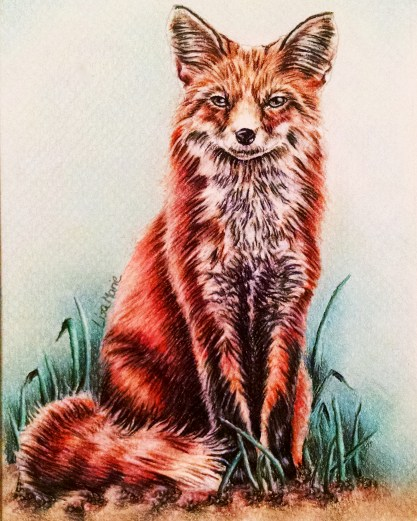 https://www.etsy.com/listing/234732411/red-fox-drawing-8x10-fox-art-print-for?ref=shop_home_active_2