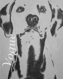https://www.etsy.com/listing/248363629/art-print-dalmatian-black-and-white?ref=shop_home_active_11