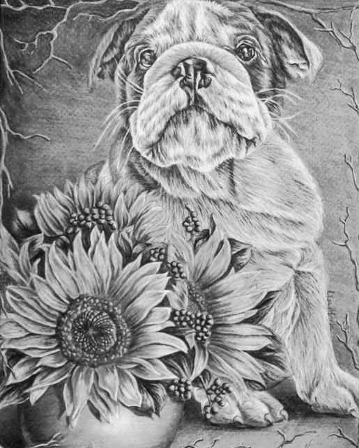 https://www.etsy.com/listing/250309289/bulldog-coloring-book-pages-adult?ref=shop_home_active_5