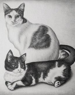 """""""Drawing of Two Cats"""" 11""""x14"""", Pencil on Paper, SOLD"""