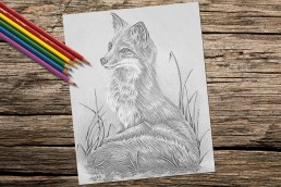 https://www.etsy.com/listing/275271474/adult-coloring-page-fox-grayscale?ga_search_query=fox&ref=shop_items_search_7