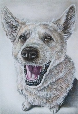"""Portrait of Smiling Dog,"" 5""x7"", Colored Pencil on Paper, SOLD"