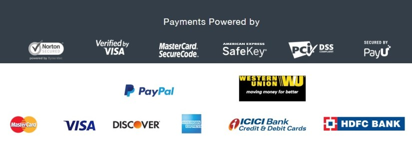 online payment options at ArtistryC