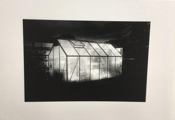 Alyse Cooper, BDes Photography