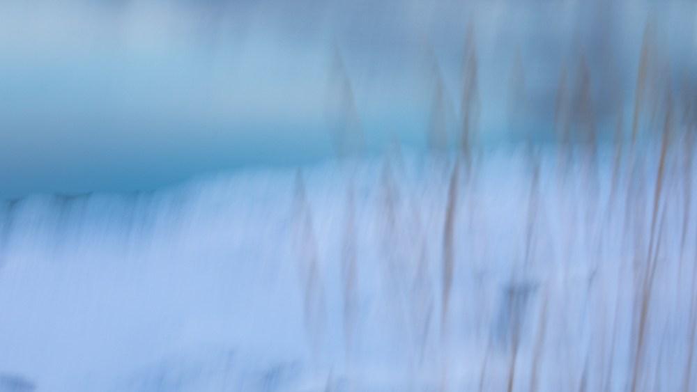 copyright, Joan Sullivan, winter, snow, grief, climate, crisis, Quebec