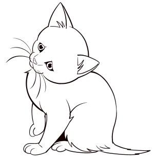 draw animals animal drawings easy drawing beginners sketch sketches kitten perfect cat zeichnen artistsnetwork zeichnungen step beginner pencil desenhos om