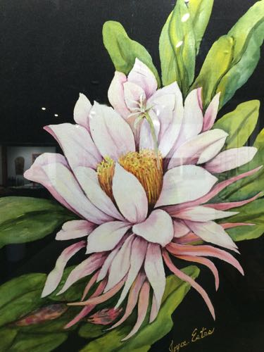 5th Annual Artists of the Apalachicola Area Member Exhibit 2018