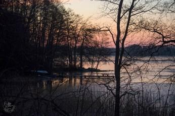 sunrise_peach_0025p