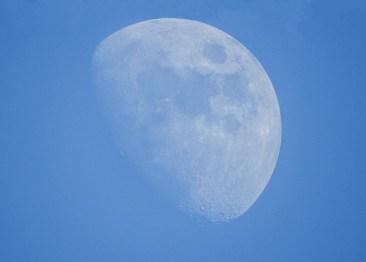 rising_moon_2114p