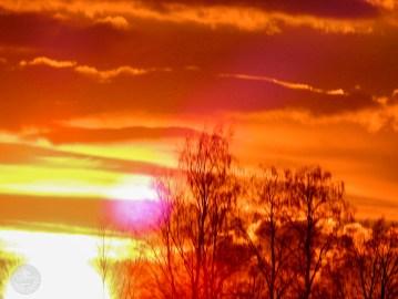 sunset_2415p