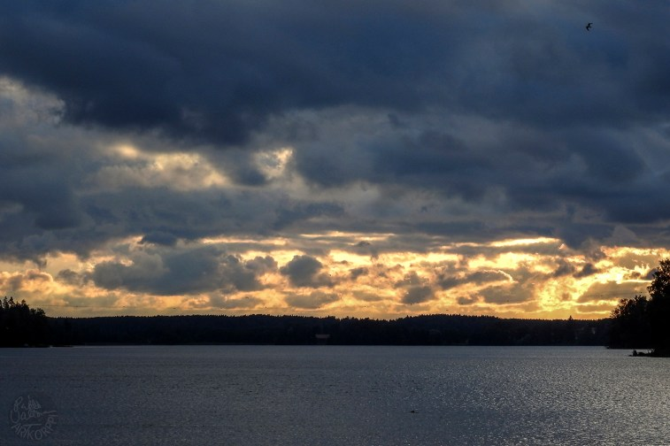 sunset_tumma_kelt5298p