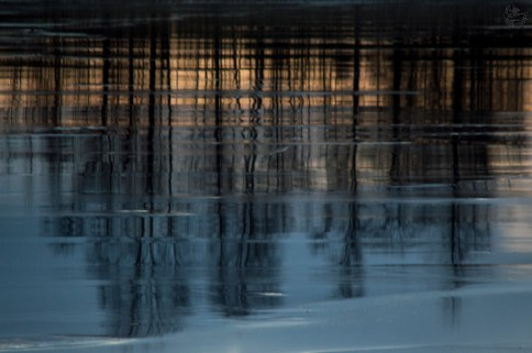 reflections_0064p
