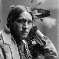 Through the Female Lens: Gertrude Käsebier's Indians