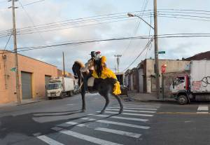 "Julie Mardin ""Flamenco Couple on Horseback, East Williamsburg"""