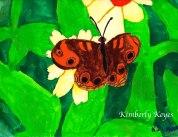 butterfly-webversion